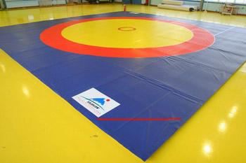 wrestling_mat